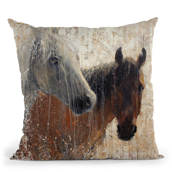 A Long December Throw Pillow By Image Conscious
