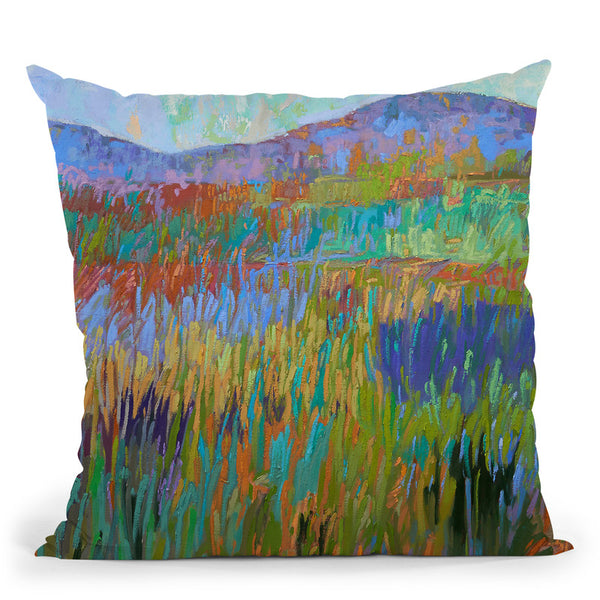 Color Field No 68 Throw Pillow By Image Conscious - by all about vibe