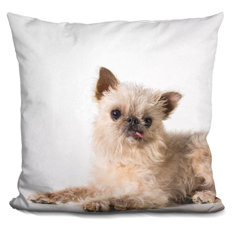 Lazy 'Owen' Square Pillow