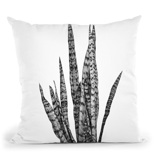 Plants8 Throw Pillow By Little Pitti