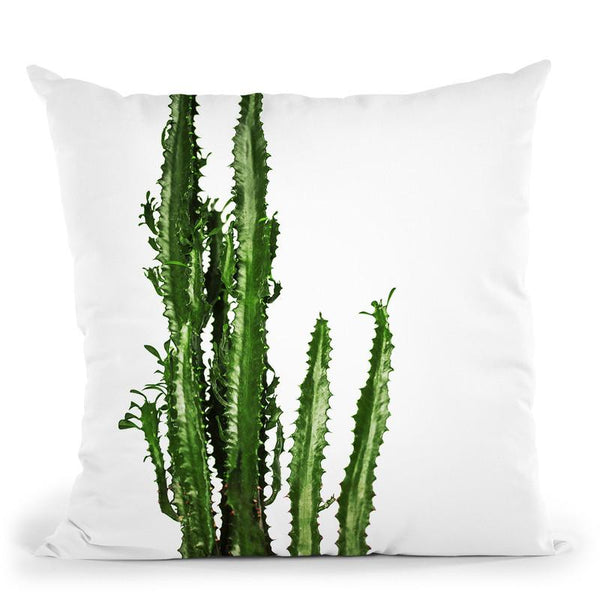 Plants16 Throw Pillow By Little Pitti