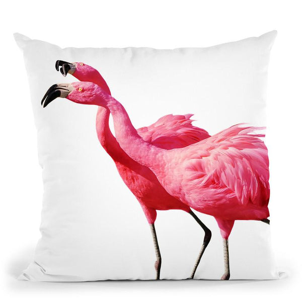 Flamingo1 Throw Pillow By Little Pitti
