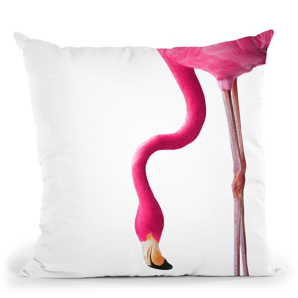 Flamingo2 Throw Pillow By Little Pitti