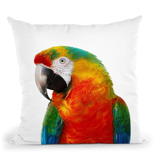 Parrot1 Throw Pillow By Little Pitti