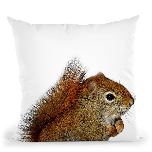 Squirrel Throw Pillow By Little Pitti