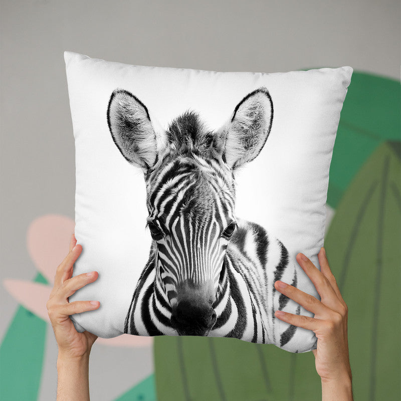 Baby Zebra Bw Throw Pillow By Little Pitti
