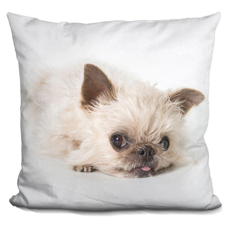 Sigh Griffin Square Pillow