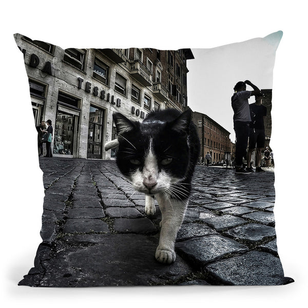 Street Cat Throw Pillow By Niklas Gustafson