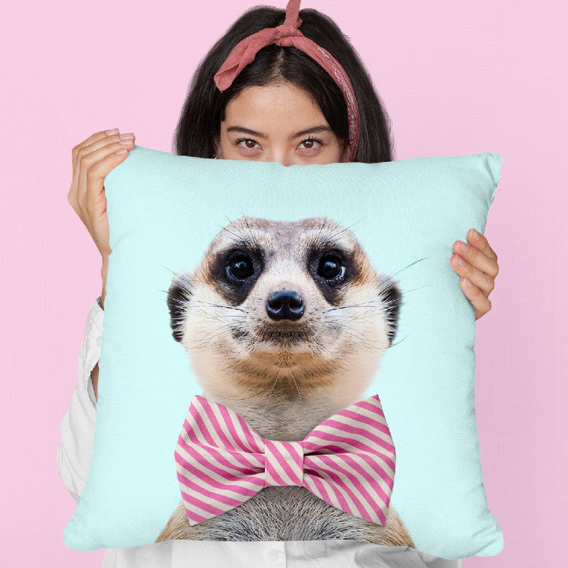 Meerkat Throw Pillow By Paul Fuentes