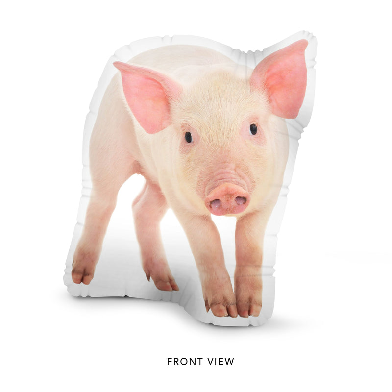 Custom Pig Pillow
