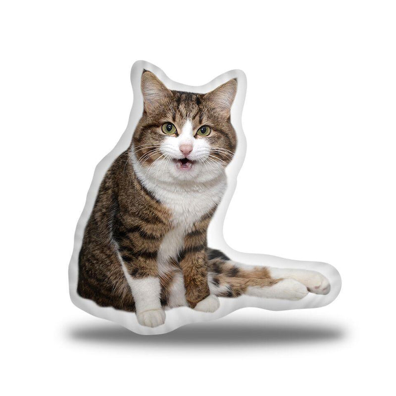 Rexiecat Says Meow Custom Shaped Pillow