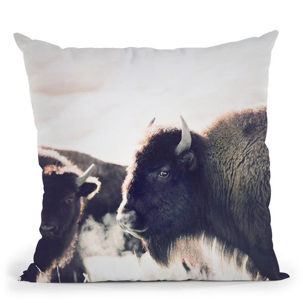 Bison Throw Pillow By Sisi And Seb