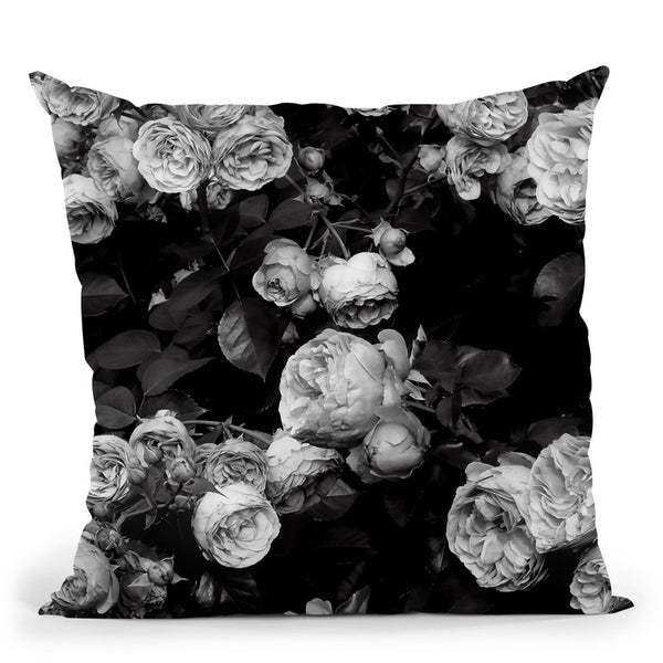 Bw Roses Throw Pillow By Sisi And Seb