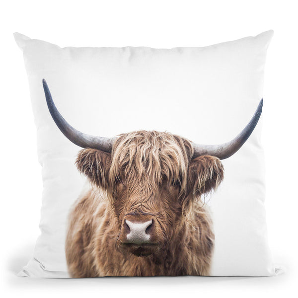 Highland Bull Throw Pillow By Sisi And Seb