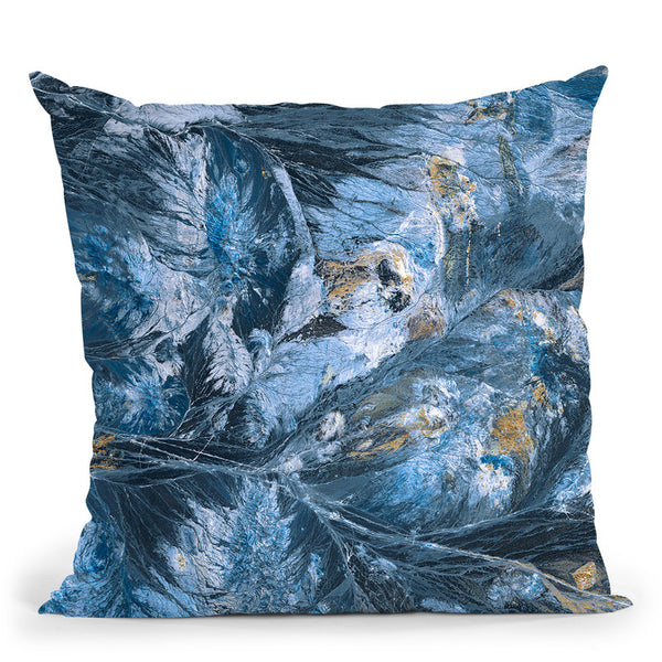 Gilded Indigo I Throw Pillow By World Art Group