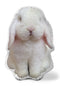 Very Fat Rabbit Sitting Throw Pillow