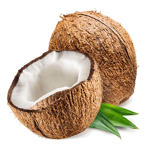 Coconut Carbon