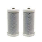 Replacement Frigidaire WFCB WF1CB 469906 RG100 Refrigerator Water Filter SGF-WFCB - The Filters Club