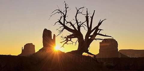 Roy Blacks Guided Tours, best escape anyone can experience in Beautiful Monument Valley.