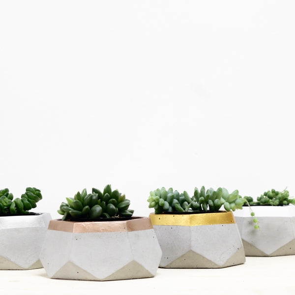 Geometric Hexagon Planter Colour Blocked