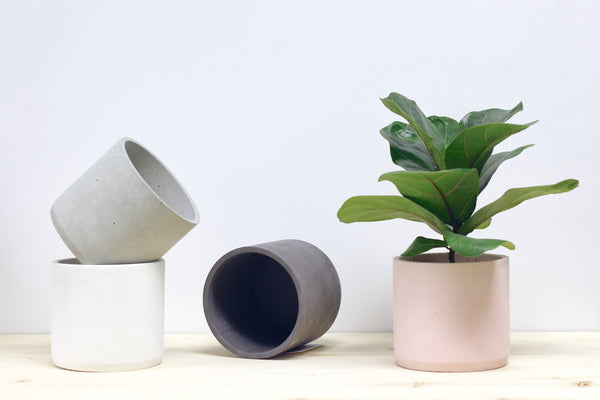 Large Cylinder Concrete Planter