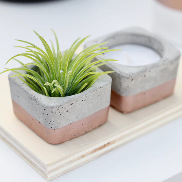 Tealight & Airplant Holders