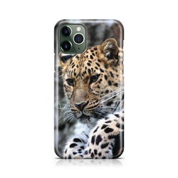 Leopard I - iPhone