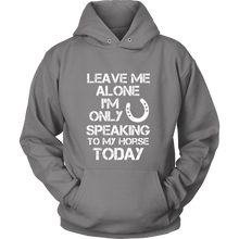 Load image into Gallery viewer, Leave Me Alone Hoodie