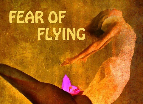 Fear of Flying book cover