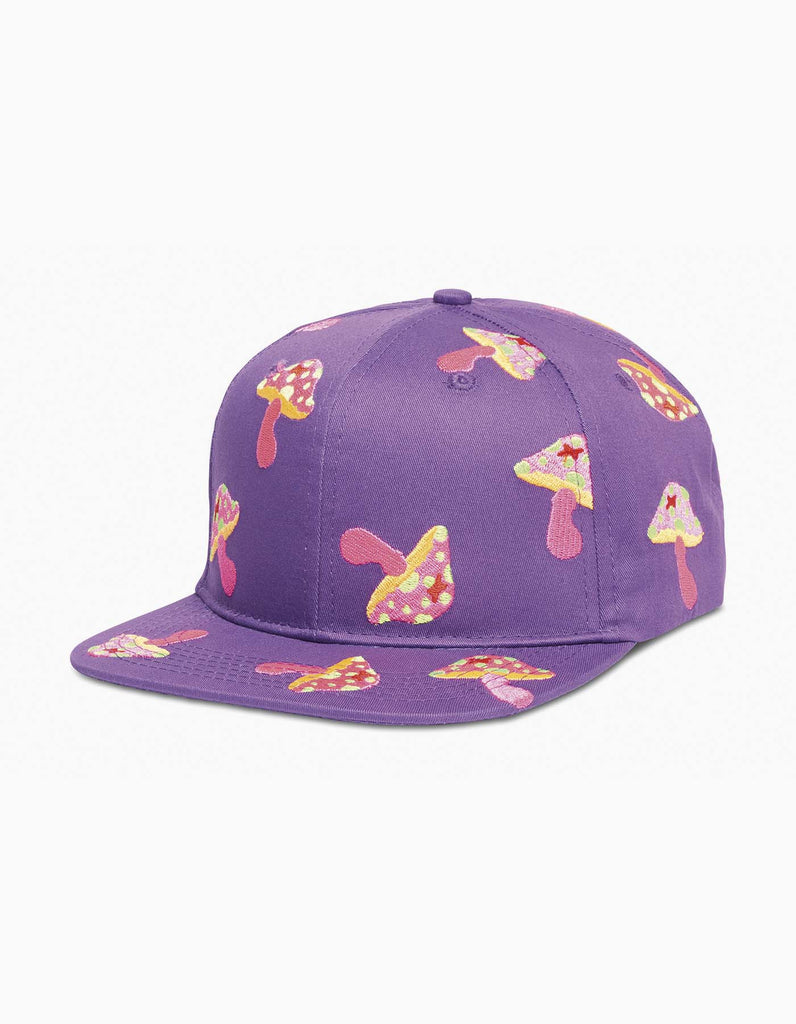 Beyond Wonderland Shrooms Cap