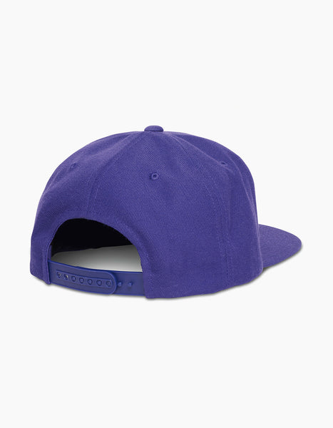 Insomniac-2017 Flash Cap Purple