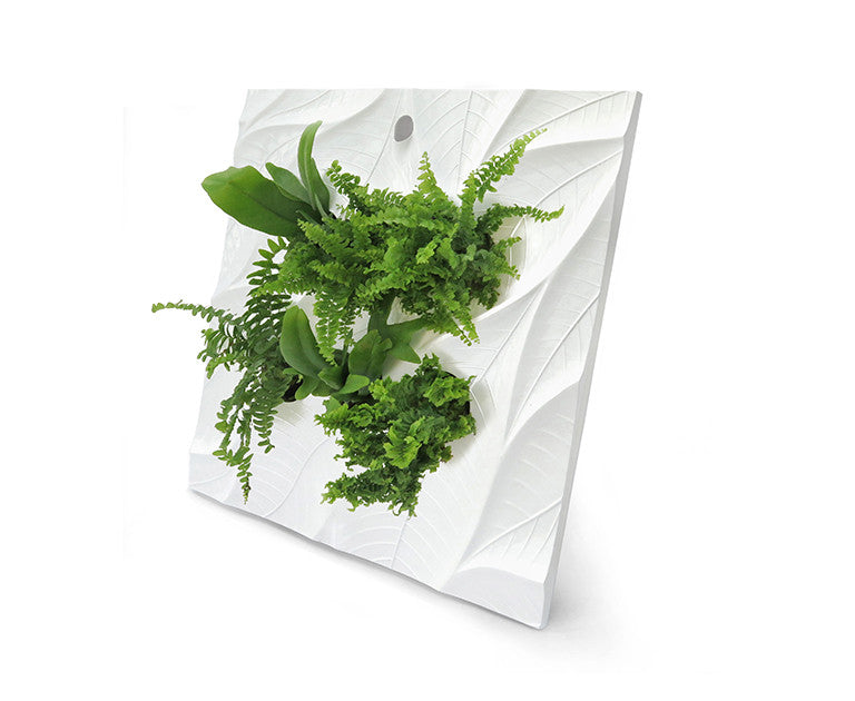 Edelwhite Wall Planter