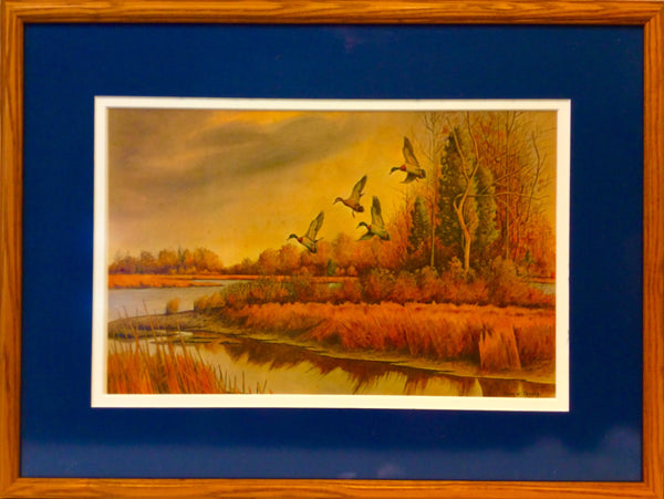 Art, Duck Scene By John Taylor