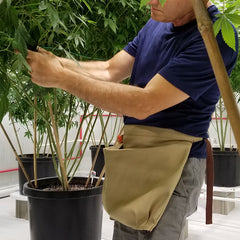 Weed trimming harvesting apron