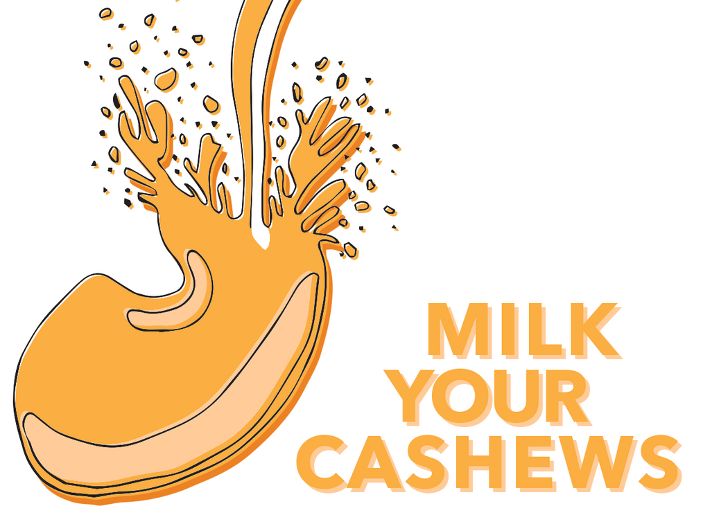 Nutmilk - Cashew Milk - Milk Your Cashews
