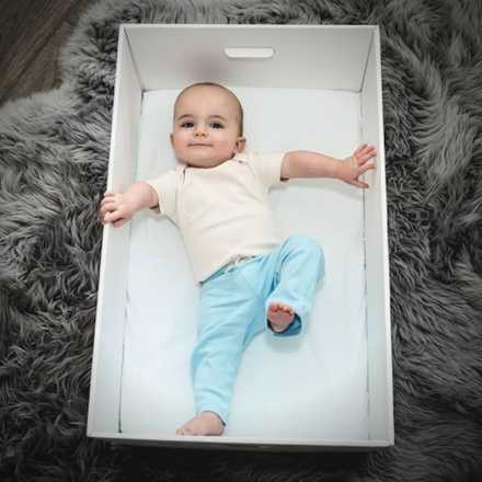 Expert Research | Risk Factors | Baby Box