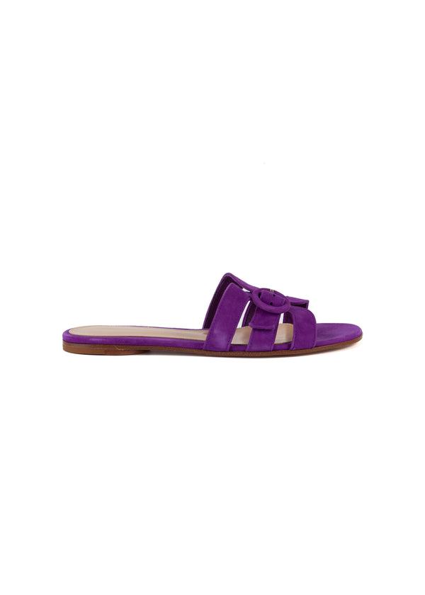 Gianvito Rossi Womens Purple Flat Sandals - Tribeca Fashion House