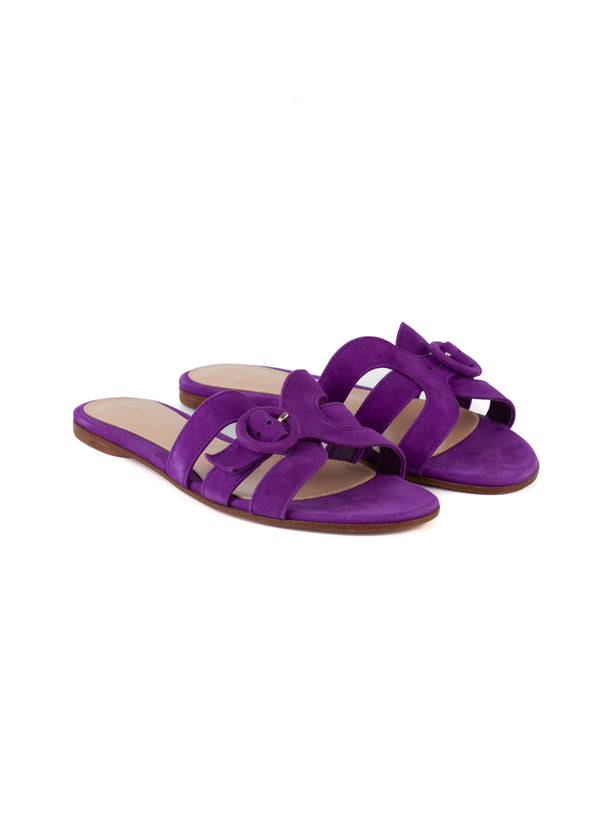 Gianvito Rossi Womens Purple Flat Sandals - ACCESSX