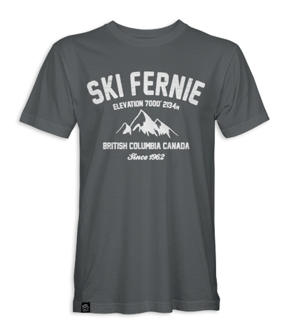 Ski Fernie Dad T- shirt
