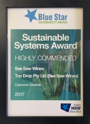 Bluestar Sustainability Award