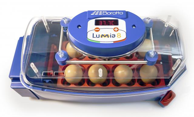 Borotto® LUMIA 8 Incubator In HEAT-RESISTANT ABS with BIOMASTER