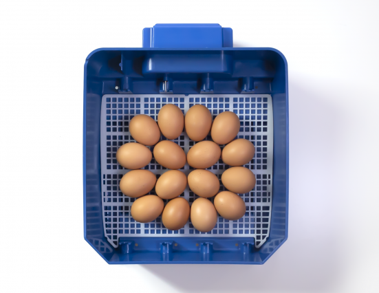Borotto® LUMIA 16 Egg Incubator In HEAT-RESISTANT ABS with BIOMASTER