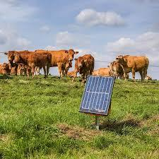 Gallagher Portable Solar Fence Energizer S200 Cows