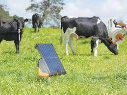 Gallagher Portable Solar Fence Energizer S200 Dairy