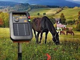 Gallagher S10 Portable Solar Fence Energizer Horses