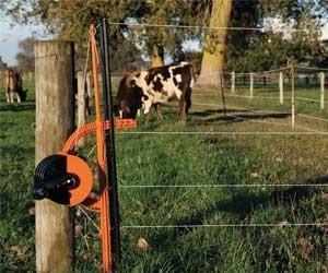 Gallagher smartfence keeping in cattle