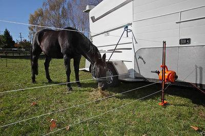 Gallagher smartfence used as a horse paddock