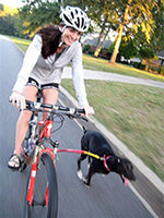 Bike Tow Leash