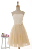 Strapless Knee Length Tulle Homecoming Dress PG028