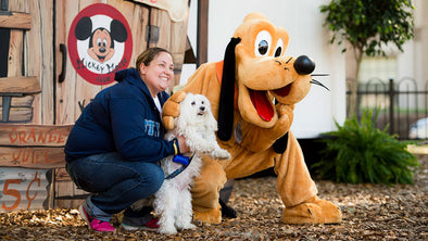 Pups Now Welcome at WDW
